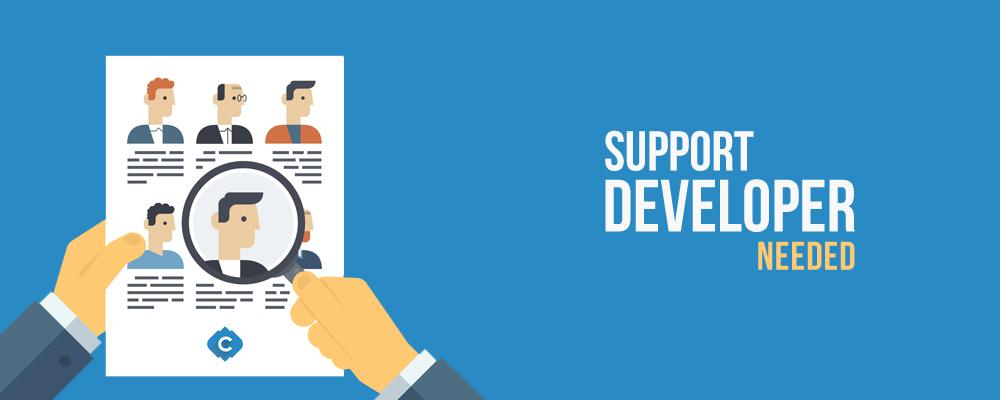 Hiring_Support developer